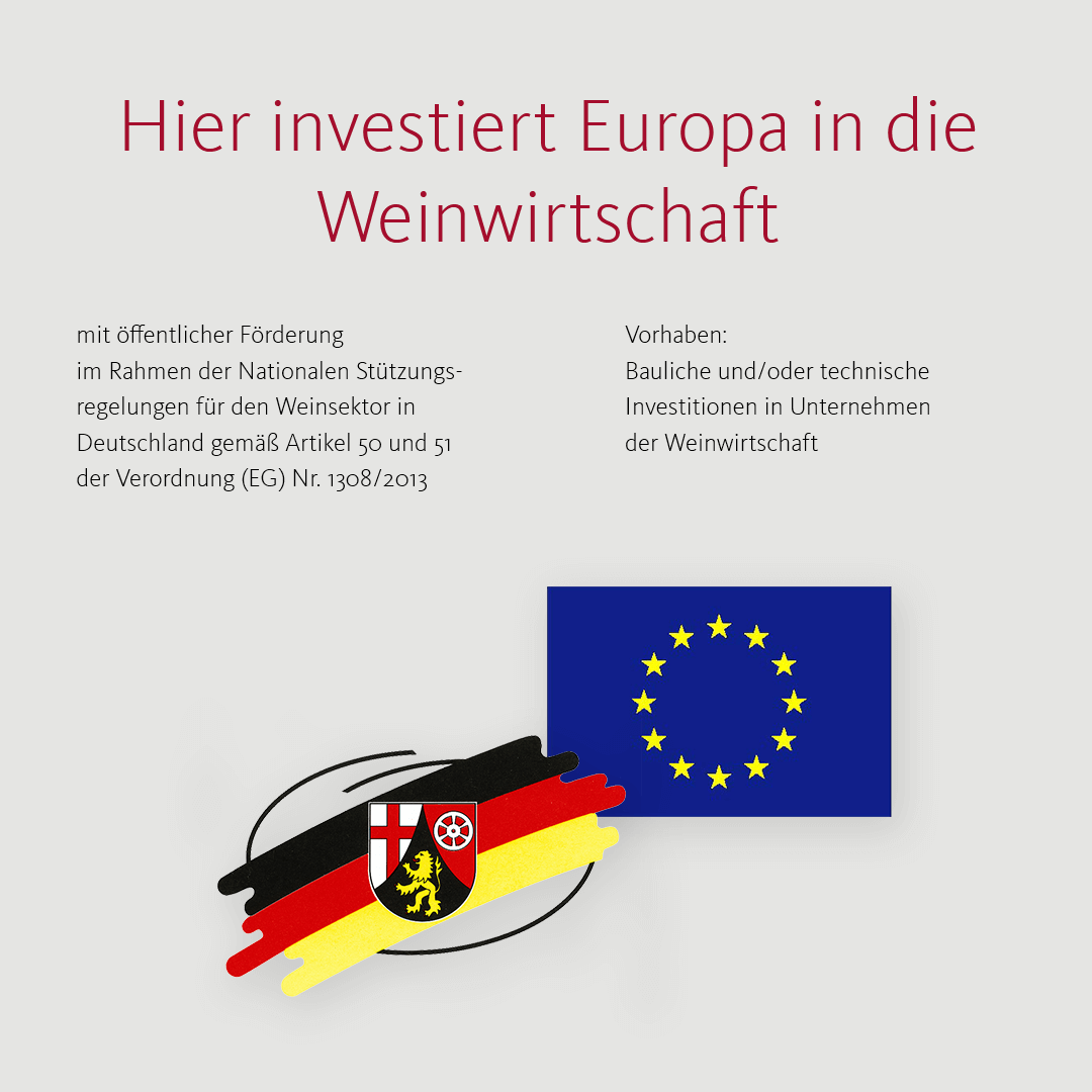 Investitionsfoerderung