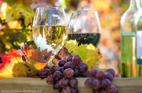 neuer_Wein_1