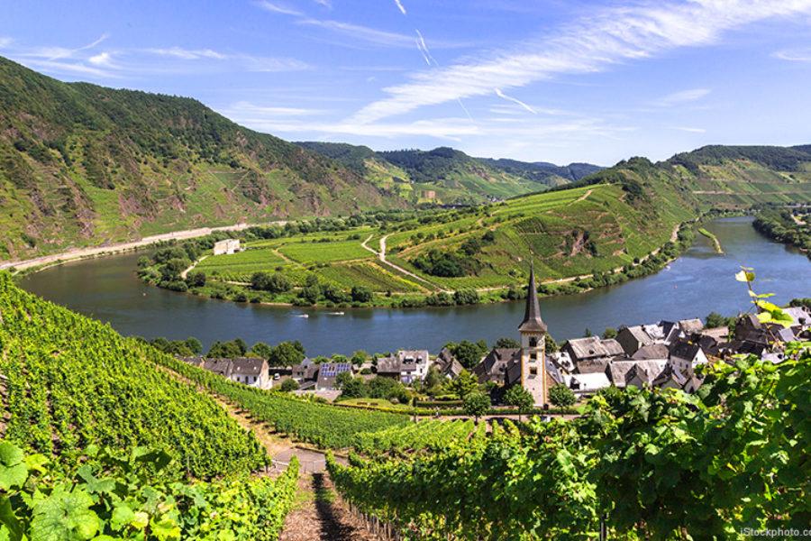"""Verlosung von Riesling """"Weinhaus Reh Kendermann"""": Gewinner stehen fest"""